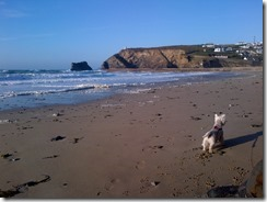 Cornwall-20130524-00551