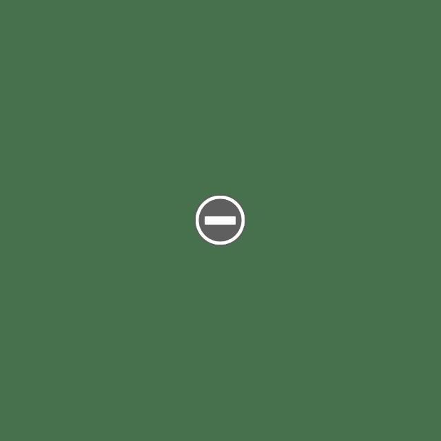 Скульптуры из бересты Любимцева Юрия Ивановича