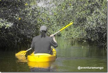 Caiaque no Rio Catu 1
