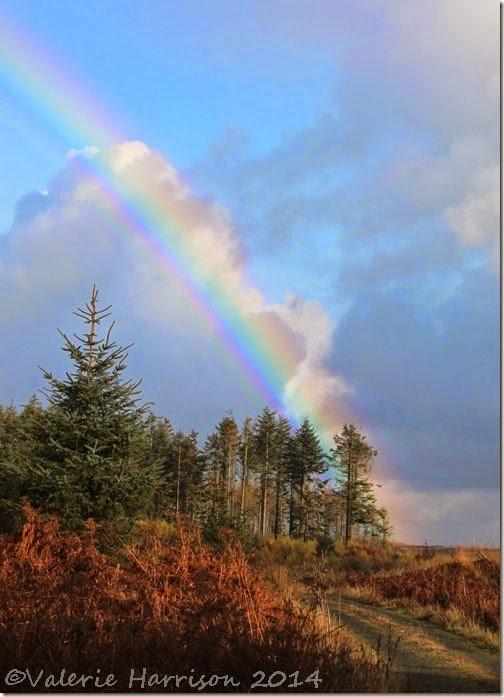 10-rainbow