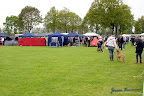20100513-Bullmastiff-Clubmatch_30838.jpg