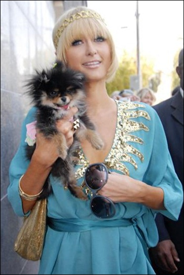 Paris Hilton cuddles a small fluffy dog as she heads out to shop in Beverly Hills, Calif