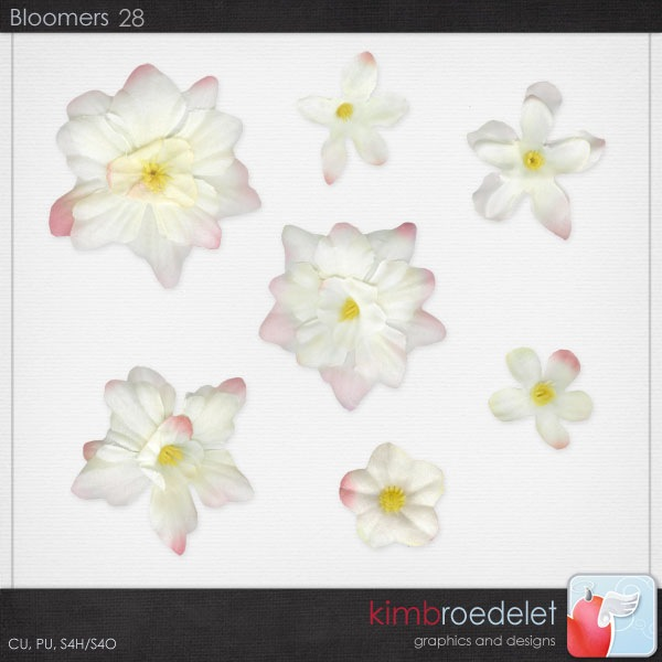 kb-bloomers28