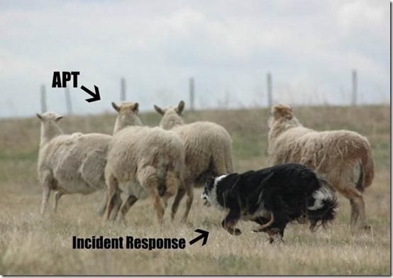 Jet Incident Response