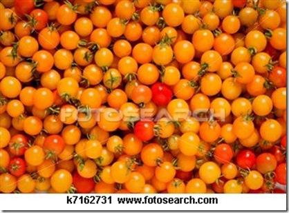 cherry-tomato_~k7162731
