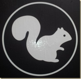 White Squirrel Snack Shop (1)