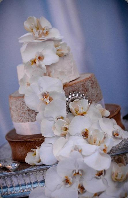 556901_314045382004892_1591960508_n scarlett & grace cheesecake cake