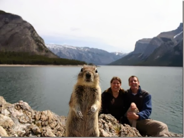 2013-best-photobombs-2