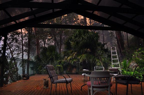 La terrasse, un jour d'incendie de forêt. Umina Beach (NSW, Australie), 23 septembre 2011. Photo : Barbara Kedzierski