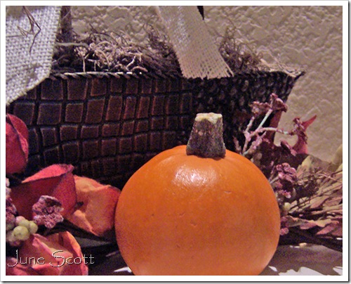 Mini_Pumpkin
