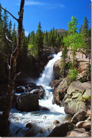 06-23-14 A RMNP Alberta Falls Loop (93)
