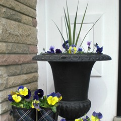 Fun Garden Planters Crop Example