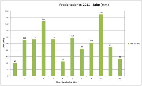 Precipitaciones Año 2011
