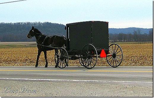 Bainbridge_AmishCommunity