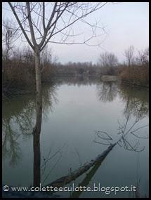 Passeggiata al Dosolo - 1 gennaio 2013 (55)