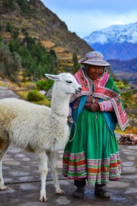Imagini Peru: Localnica cu lama la Colca Canyon langa Arequipa