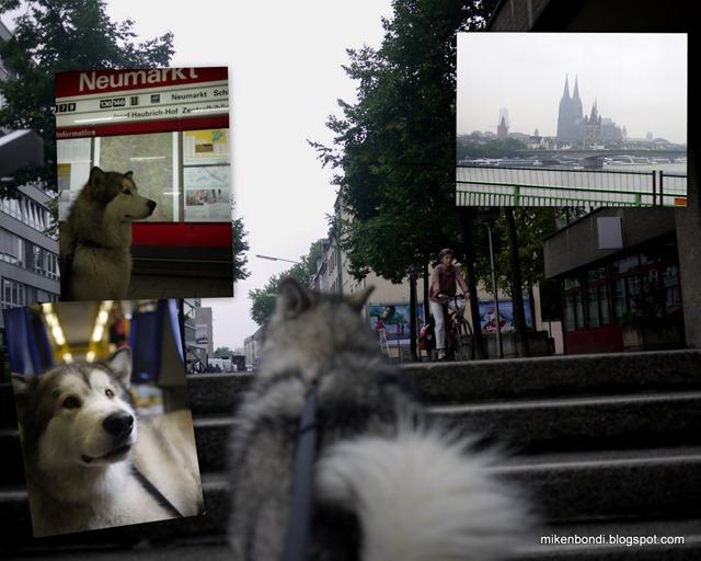 Cologne train journey