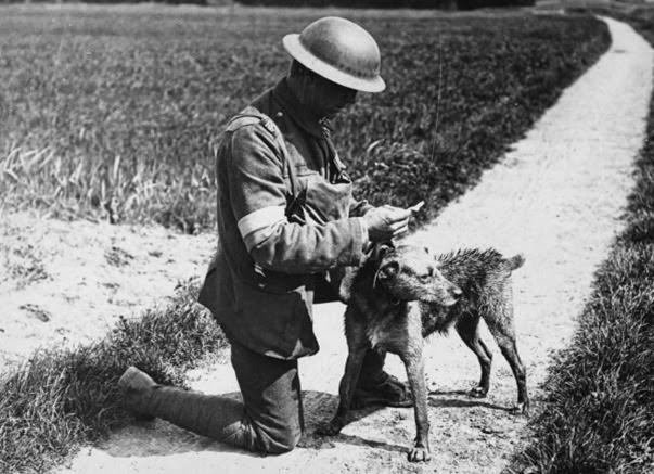 Primeira Guerra Mundial