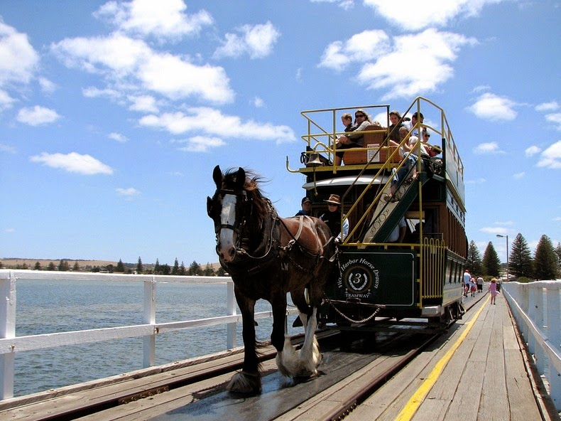 victor-harbor-horse-trams-10
