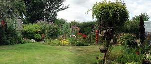 norma's back garden