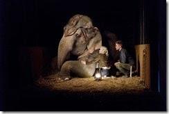 Agua-para-Elefantes-12