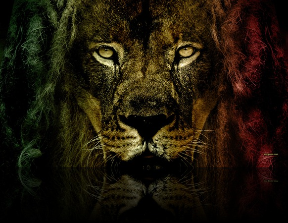 lion_of_judah_by_djog