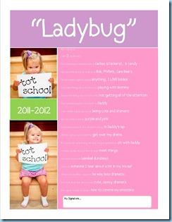 School Questionairre Ladybug