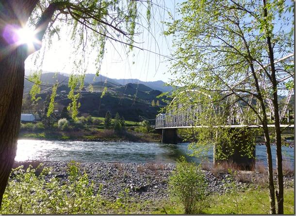 salmon river 015