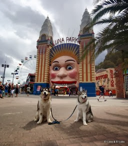 2009 Bondi & Munson at Luna Park