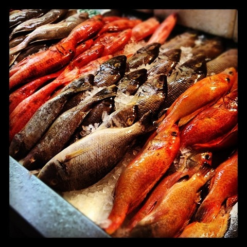 #105 - Fresh fish at Market Row in Brixton Village