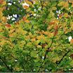 2012-baran-dorota-050.jpg