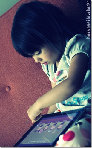 iPadMonkey