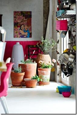 kitchen-indoor-garden-832