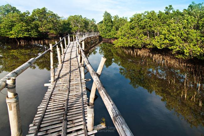 Villa Igang's Magrove Forest Park at Guimaras