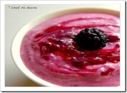 blackberrycoulisnyogurt