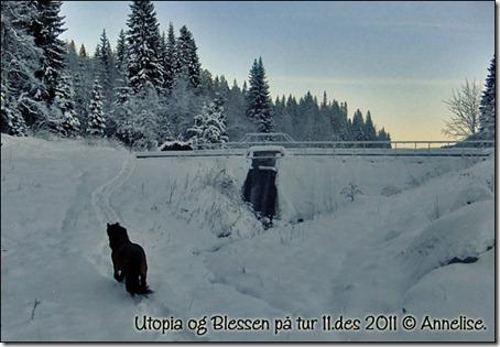 utopia-tur-11des_04