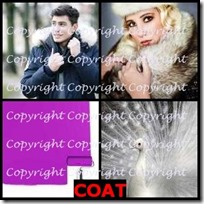 COAT- 4 Pics 1 Word Answers 3 Letters