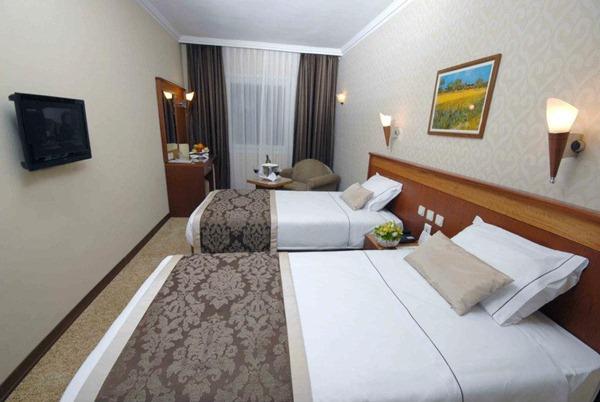 فندق ليون2