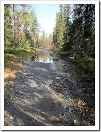 I början var det en bred grusväg med några stora vattenpölar på. Enkelt att gå på.