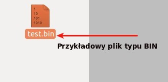 Przykładowy plik BIN