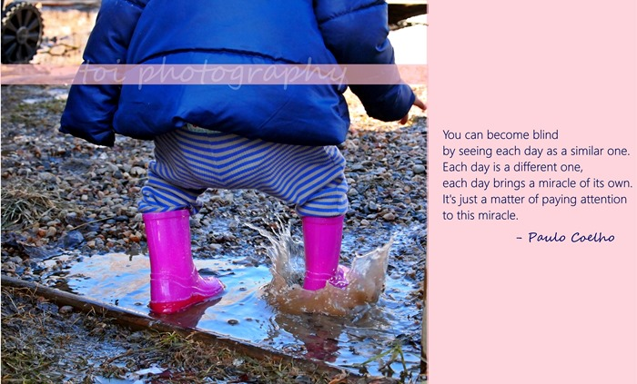AOI in the puddle quotes
