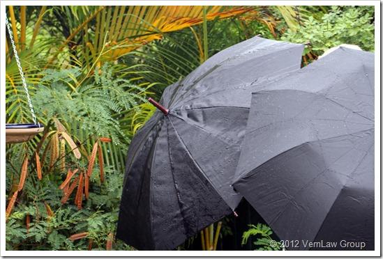 UmbrellasIMG_6034 (2)