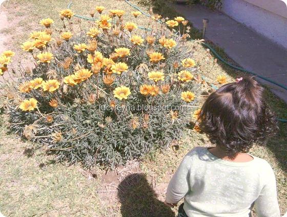 120327 Mira los pequeños y hermosos milagros de la vida niña RG viendo flores