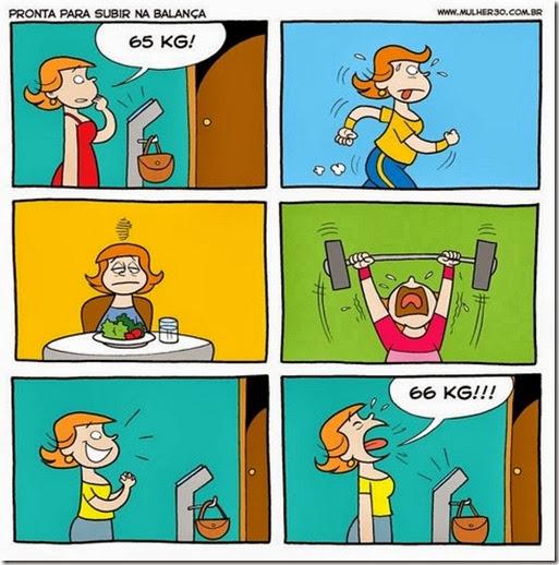 fases da dieta