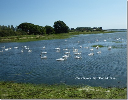 Emsworth Bike Ride (15)