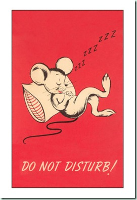 do-not-disturb-sleeping