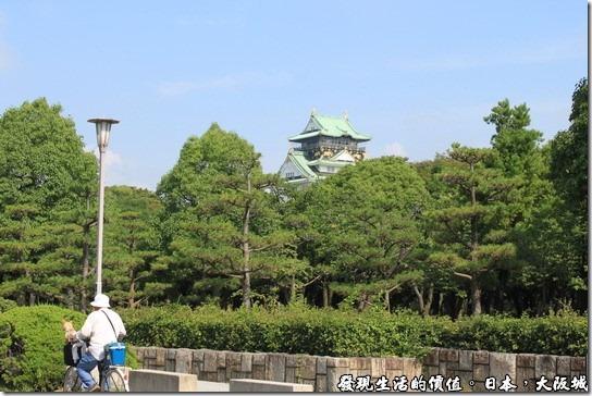 日本大阪城公園,照片中有個日本民眾正期著腳踏車載著小狗,往大阪城天守閣前進。