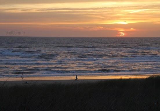 Egmond aan Zee 231 (2)