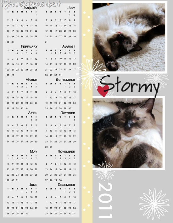 Calendar 2011-001