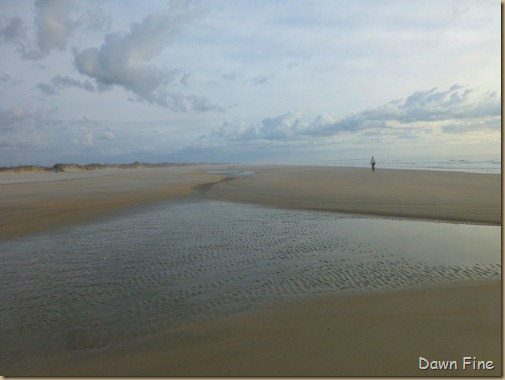 North beach  _005